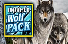 Untamed Wolf Pack